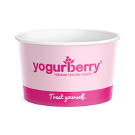 147_FC16 440ml Food Container Yogurberry